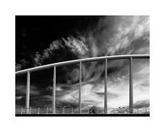 Valencia 31 (BLANCA GOMEZ) Tags: spain valencia bw blackwhite light shadows textures silhouettes patterns sky clouds nubes cielo puente bridge puentedelaexposición puentedelapeineta exhibitionbridge santiagocalatrava architecture arquitectura arquitecto turiagarden jardíndelturia