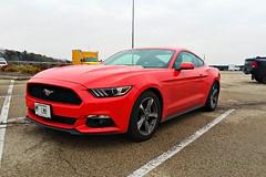 2015 Ford Mustang (Cragin Spring) Tags: wisconsin wi midwest unitedstates usa unitedstatesofamerica lakegeneva lakegenevawi lakegenevawisconsin walworthcounty car orange mustang fordmustang 2015 ford
