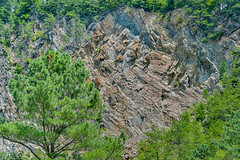 Jagged Forms (risingthermals) Tags: terrain usa mountains green america nc united north hills forms states smoky appalachians mountainous trees summer nature outdoors natural