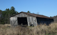 It's A Leaner (Diane Marshman) Tags: barn old building weathered wood barnboard siding gray rusty metal roof weather vane weathervane blue sky pine trees tire leaning deteriorated ruin rural farm country fall autumn season pa pennsylvania state nature