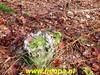 "OLYMPUS DIGITAL CAMERA • <a style=""font-size:0.8em;"" href=""http://www.flickr.com/photos/118469228@N03/49026396517/"" target=""_blank"">View on Flickr</a>"