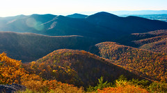 Fall (debamalya.chatterjee) Tags: landscape landscapephotography nikon nature nationalpark naturephotography mountains shenandoah shenandoahnationalpark fallcolor