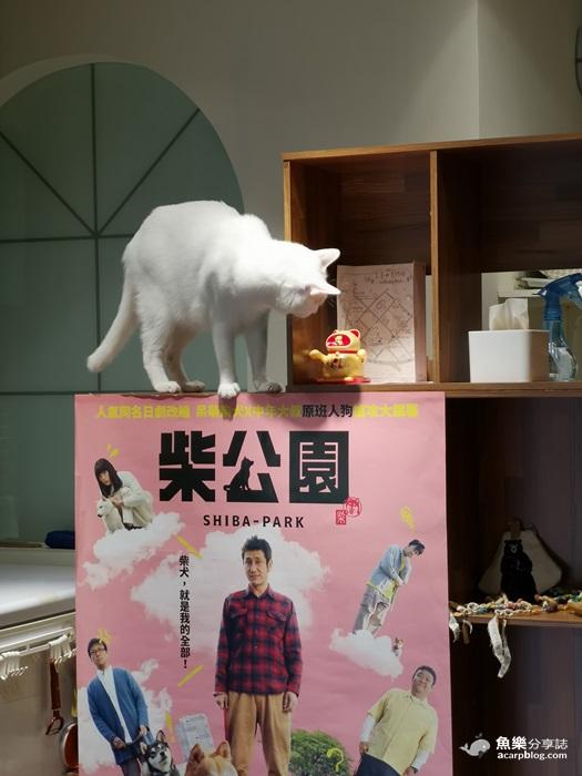 【台北中正】日安 Ciao早午餐|寵物友善|古亭站美食 @魚樂分享誌