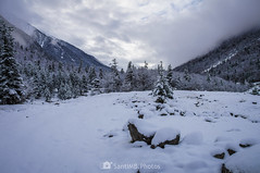Con V de valle (SantiMB.Photos) Tags: 2blog 2tumblr 2ig conangles nieve snow otoño autumn bosque forest valle valley geo:lat=4262339167 geo:lon=076821633 geotagged senet cataluna españa