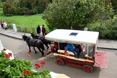Mackinac Taxi (jjknitis) Tags: horsedrawn taxi carriage greatlakescruise lechamplain ponant september2019 tauck mackinacisland michigan