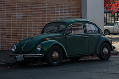 Volkswagen Beetle (mlokren) Tags: 2019 car spotting photo photography photos pic picture pics pictures pacific northwest pnw pacnw oregon usa vehicle vehicles vehicular automobile automobiles automotive transportation outdoor outdoors vw volkswagen beetle bug green