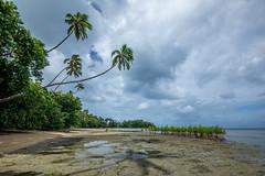 Low tide (agasfer) Tags: 2019 fiji beqa blr pentax k3 sigma1020 sky clouds palm trees