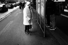 it's all so confusing (gato-gato-gato) Tags: leica leicammonochrom leicasummiluxm35mmf14 mmonochrom messsucher monochrom schweiz strasse street streetphotographer streetphotography suisse svizzera switzerland zueri zuerich zurigo black digital flickr gatogatogato gatogatogatoch rangefinder streetphoto streetpic streettogs tobiasgaulkech white wwwgatogatogatoch zürich kantonzürich manualfocus manuellerfokus manualmode schwarz weiss bw monochrome blanc noir strase onthestreets mensch person human pedestrian fussgänger fusgänger passant sviss zwitserland isviçre zurich