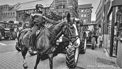 B&W.Boerenprotest,Waagplein,Groningen stad,the Netherlands,Europe (Aheroy) Tags: monochrome blackwhite bianconero blackandwhite schwarzweiss 黑白 noiretblanc γραπτόσ inbiancoenero 흑백 zwartwit pretoebranco светотенево blancoynegro bw zw waagplein police politie aheroy aheroyal street streetshot groningen groningenstad horse paard pferd cheval caballo policia trekkers tractors tractoren beredenpolitie mountedpolice polizei dutchpolice