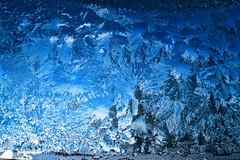 Ice art through the window (darletts56) Tags: sky ice window blue white green art creation through tree picture saskatchewan canada