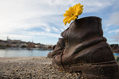 Shoes on the Danube Bank (Geraint Rowland Photography) Tags: shoe memorial shoesonthedanubebank danube budapest river wideangle doctormartin dm boot jews hungarianhistory historical poignant sadness death war peace flower yellow canon wwwgeraintrowlandcouk