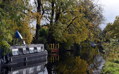 Basingstoke Canal Ash - Ash Vale 3 November 2019 050 (paul_appleyard) Tags: basingstoke canal reflections water ash surrey november 2019 boat still narrowboat