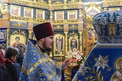 43. Всех скорбящих Радость 05.11.2019