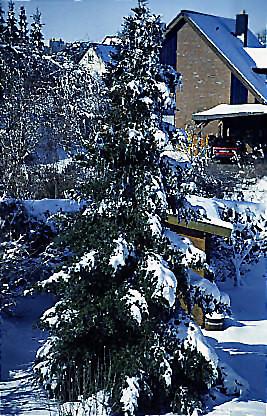 "Winter 6 • <a style=""font-size:0.8em;"" href=""http://www.flickr.com/photos/69570948@N04/49028132281/"" target=""_blank"">Auf Flickr ansehen</a>"