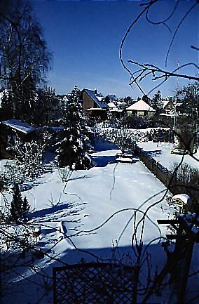 "Winter 5 • <a style=""font-size:0.8em;"" href=""http://www.flickr.com/photos/69570948@N04/49028132321/"" target=""_blank"">Auf Flickr ansehen</a>"