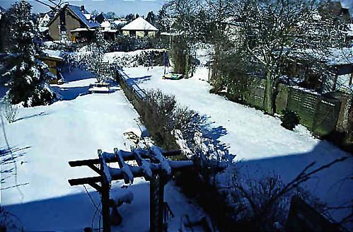 "Winter 4 • <a style=""font-size:0.8em;"" href=""http://www.flickr.com/photos/69570948@N04/49028132386/"" target=""_blank"">Auf Flickr ansehen</a>"