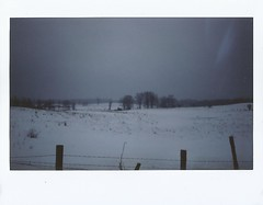 "Cold Country (dreamscapesxx) Tags: instant instax fujiinstax200 fujiinstaxwide winter cold frozen ""winterwonderland"" countryside inthecountry michigan"