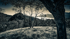 Loch Ness (prajpix) Tags: loch lake water freshwater invernesshire highlands scotland wild nature mono monochrome blackandwhite landscape sky clouds scenery