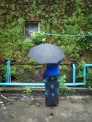 Woman with Umbrella Pauses Near a Vine Covered Wall in Rangoon