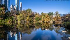 Central Park Pond (20191102-DSC07868) (Michael.Lee.Pics.NYC) Tags: newyork centralpark autumn fall pond architecture cityscape skyline skyscraper sony a7rm4 laowa12mmf28 magicshiftconverter reflection
