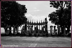 MALECÓN 2000. GUAYAQUIL - ECUADOR. (Alberto Cervantes Photography.) Tags: malecon2000 malecon 2000 guayaquil ecuador ecuadorguayaquil guayas gyeecuador ecuadorgye tree superbw bw monochrome blackwhite blanconegro indoor outdoor blur rioguayas river sea ocean lake sky nubes clouds retrato portrait photography streetphotography photoborder photoart art creative guayaquilcity city hemiciclodelaretondamaleconsimombolivar hemiciclodelaretonda hemiciclo retonda simonbolivar simon bolivar republicadelecuador guayaquilecuador luz light color colores colors brillo brightcolors flag super