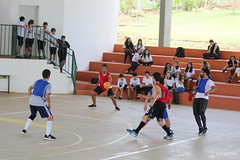 "Interpíadas | 2019 - Escola Interativa • <a style=""font-size:0.8em;"" href=""http://www.flickr.com/photos/134435427@N04/49028355883/"" target=""_blank"">View on Flickr</a>"