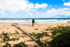 1M9A9776 (photogsrq) Tags: 2019 20191012 details janetcombsphotography maccauslandwedding pontevedrabeach prewedding wedding