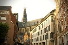 Grote of Sint-Bavokerk, Haarlem