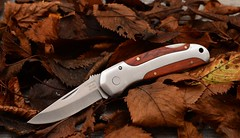 The Fall Knife (cnmark) Tags: herbertz folding pocket knife taschenmesser 230310 fall autumn leaves colour color blätter herbst farben handle griff ©allrightsreserved