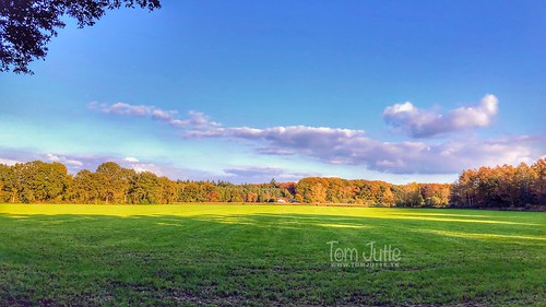 Herfst op landgoed Velhorst, Almen, Gelderland, Netherlands - 3062