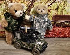 Military Family Appreciation Day (marilyntunaitis) Tags: military jeep plush stuffedanimals teddybears