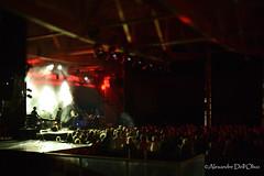 Algiers_DSC7733 (achrntatrps) Tags: nikon lelocle rockaltitudefestival rock pop nikkor d4 grantorino alexandredellolivo blackseadahu sons algiers aplacetoburystrangers sophiehunger simongerber luterne
