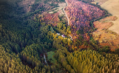 Foliage Tones (Oash_Dany) Tags: italy cielo montagna paesaggio nuvola crepuscolo calma shadows sonyalpha sunnyday clouds cloudy beautiful colors sony outside cloud color paysage nuvole orange day dynamic long exposure roccia sunrise mountain alps alpi drone dji