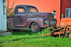 1950 Ford2_199966 (rjmonner) Tags: agriculture agricultural agronomy antique aged antiquity abandoned barn bygonedays country cornbelt dilapidated dormant decayed decay deserted exposed farm farmstead ford forgotten grass green homestead heartland history happytruckthursday iowa isolated inert junker jalopy junk nikon midwest metal neglected outdoors old oxidized outbuildings orange quaint quiet unique antiques rural relic rustic rusted red rust textured truck texture truckthursday trees tire usa unused vintage vanishing vehicle yesteryear yard