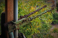 protect your garden (try...error) Tags: machine gun weapon wwii world war crete kreta museum green rusty abandoned decay