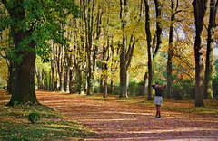 When Autumn Falls (Behappyaveiro) Tags: serralves serralvesfundation outono autumn coresoutono autumncolours autumnleaves porto oporto portugal europa europe tree outside coth5 canon light shadow colour girl teen teenager leaf leaves maitreya green orange park walking relax