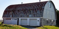 Rusty roof barn (Millie Cruz (On and Off)) Tags: barn country farm grass rusty roof green windows doors metal outdoors canoneos5dmarkiii ef24105mmf4lisusm