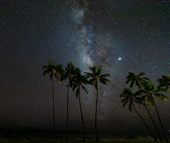 The Milky Way from One Alii Park (mattsj1984) Tags: stars trees milkyway landscapes palmtrees molokai islands