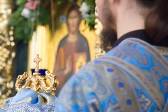 120. Всех скорбящих Радость 06.11.2019