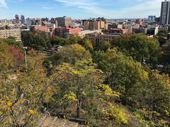 Harlem, New York (Quench Your Eyes) Tags: centralharlem historicdistrict manhattan marcusgarveypark mountmorrisfirewatchtower mountmorrispark mountmorrisparkhistoricdistrict ny nycparks uptown event harlem manhattan mountmorrisparkevents newyork newyorkcity nyc uppermanhattan