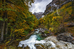 Arripas (sostingut) Tags: paisaje montaña otoño bosque río cascada agua roca árbol valle cañón cielo colores nikon tamron d750 haida pirineos ordesa mountain valley river waterfall autumn fall landscape beautiful forest