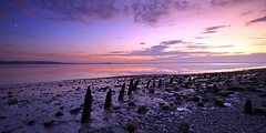 Moonrise at Humber Sunset (Yorkshire Landscape Photographer) Tags: landscape sunset panoramic canon east yorkshire canon24mmtselens northferriby leefilters landscapephotography riverhumber 5dsr canon5dsr moonrise humber hull humberside tse 24mm f35l ii canontse24mmf35lii