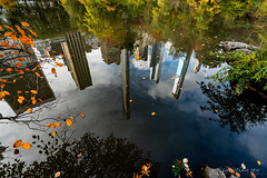 Autumn in New-York (christian.rey) Tags: city nyc newyork automne buildings centralpark sony alpha reflets refections atumn a7r2 park 1635 a7rii usa