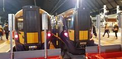 Abellio Scotrail Class 385's 385040 and 385104 at Glasgow Queen Street Platfoms 4 + 5 prior to working their services (07-11-19) (Rikki Cameron) Tags: trains abellio scotrail scotrailsaltireblue class385 3850 3851 385040 hitachi express 2n67 1r96 glasgowqueenstreet dunblane edinburgh 385104
