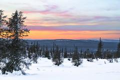 Sunset (ikkasj) Tags: maisema auringonlasku tunturi sammaltunturi winter sunset snow finland landscape lapland muonio pallasyllästunturinationalpark