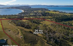 65 Roaring Beach Road, South Arm TAS