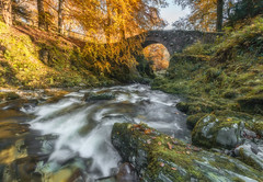 Foleys Bridge (peter_beagan) Tags: tollymore autumn stepping stones forest county down northern ireland waterfall river colours trees long exposure canon 5diii irish bridge foleys