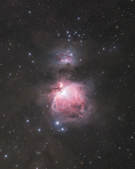 The Orion Nebula (AstroBackyard) Tags: orion nebula astrophotography space astronomy telescope deepsky night photography dslr canon m42