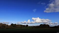 Un ciel Picard (Un jour en France) Tags: hautsdefrance picardie oise ciel cielpaysage sky nuage nuageux canoneos6dmarkii canonef1635mmf28liiusm eos groupenuagesetciel