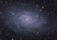 M33 (dmkusz79) Tags: m33 triangulum galaxy skywatcher asi1600mm eq6rpro optolong backyard bortle4 lrgb orion ssag pegasusastro astrometrydotnet:id=nova3735219 astrometrydotnet:status=solved